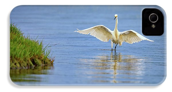 An Egret Spreads Its Wings IPhone 4 Case by Rick Berk