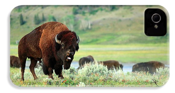 Angry Buffalo IPhone 4 Case by Todd Klassy