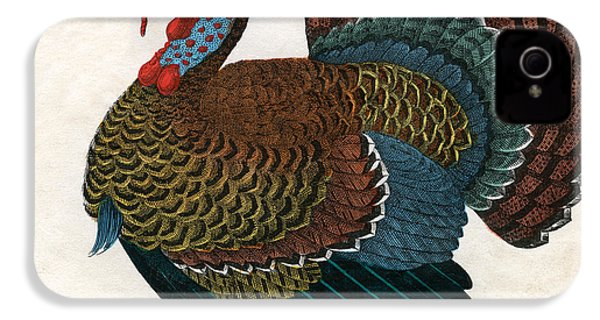 Antique Print Of A Turkey, 1859  IPhone 4 / 4s Case by American School