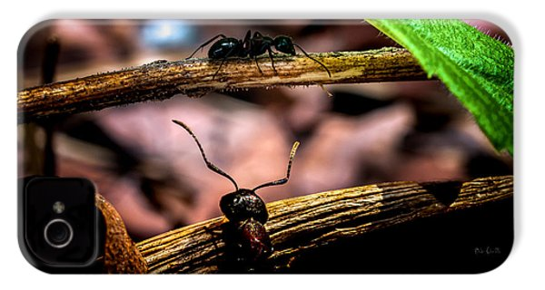 Ants Adventure IPhone 4 Case by Bob Orsillo