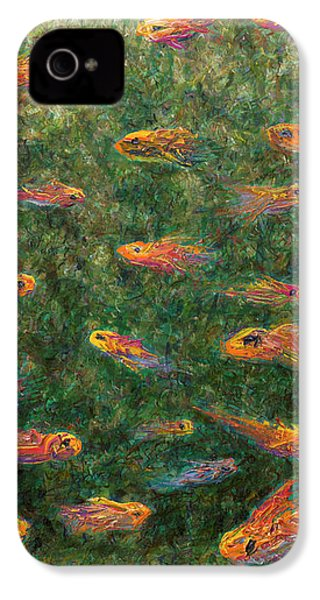 Aquarium IPhone 4 / 4s Case by James W Johnson
