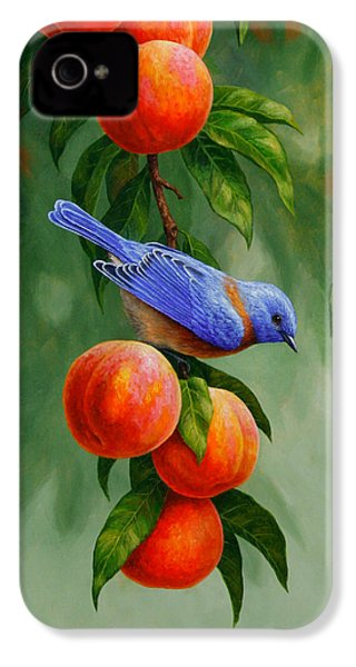 Bluebird And Peaches Greeting Card 1 IPhone 4 / 4s Case by Crista Forest