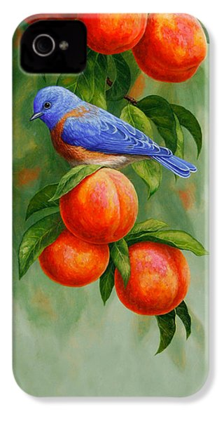Bluebird And Peaches Greeting Card 2 IPhone 4 / 4s Case by Crista Forest