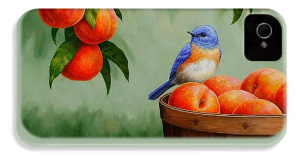 Bluebird And Peaches Greeting Card 3 IPhone 4 Case