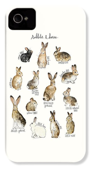 Rabbits And Hares IPhone 4 Case by Amy Hamilton