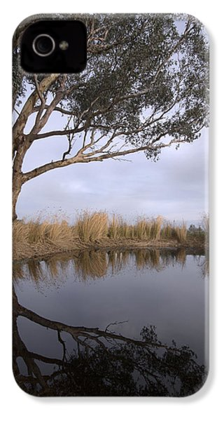 Dam IPhone 4 Case by Linda Lees