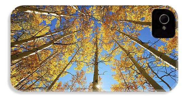 Aspen Tree Canopy 2 IPhone 4 Case by Ron Dahlquist - Printscapes