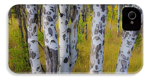 IPhone 4 Case featuring the photograph Aspens by Gary Lengyel