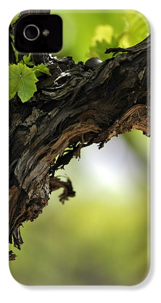 IPhone 4 Case featuring the photograph At Lachish Vineyard by Dubi Roman