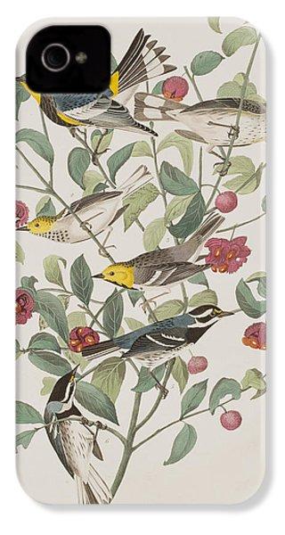 Audubons Warbler Hermit Warbler Black-throated Gray Warbler IPhone 4 Case by John James Audubon