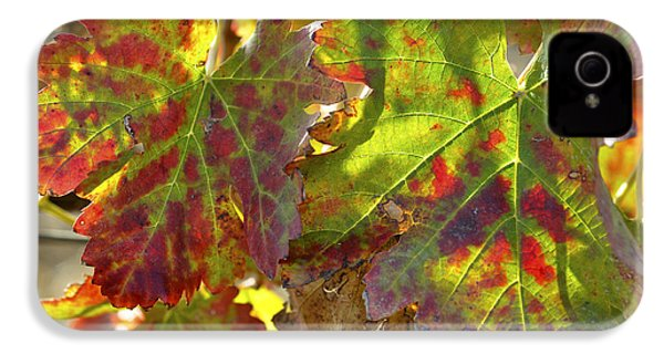 IPhone 4 Case featuring the photograph Autumn At Lachish Vineyards 2 by Dubi Roman