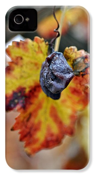 IPhone 4 Case featuring the photograph Autumn At Lachish Vineyards 5 by Dubi Roman