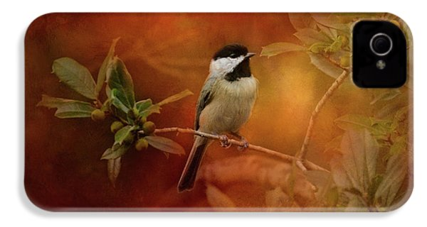 Autumn Day Chickadee Bird Art IPhone 4 Case by Jai Johnson