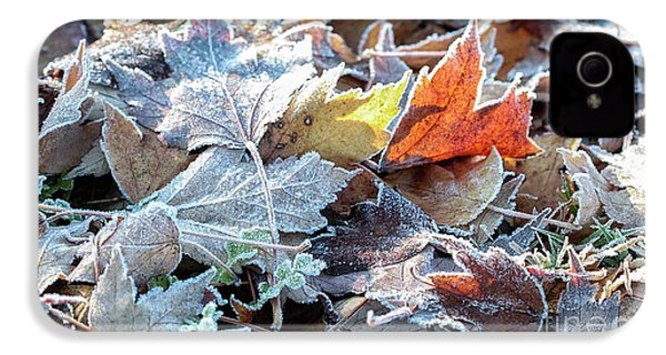 Autumn Ends, Winter Begins 3 IPhone 4 Case