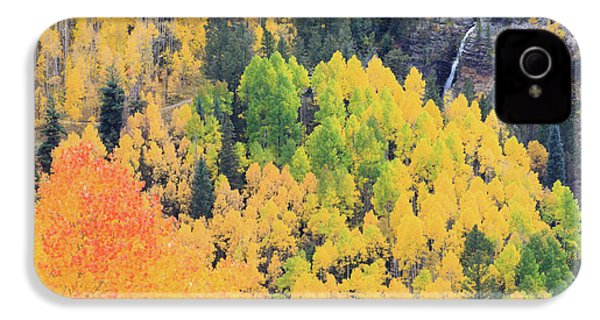 Autumn Glory IPhone 4 Case by David Chandler