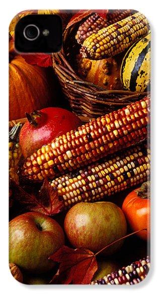 Autumn Harvest  IPhone 4 Case