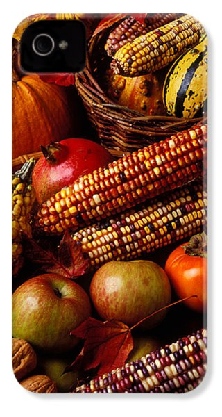 Autumn Harvest  IPhone 4 Case by Garry Gay
