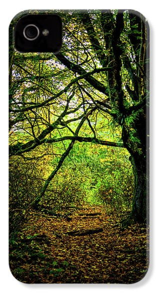 IPhone 4 Case featuring the photograph Autumn Light by David Patterson