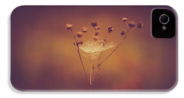 Autumn Web IPhone 4 Case by Shane Holsclaw