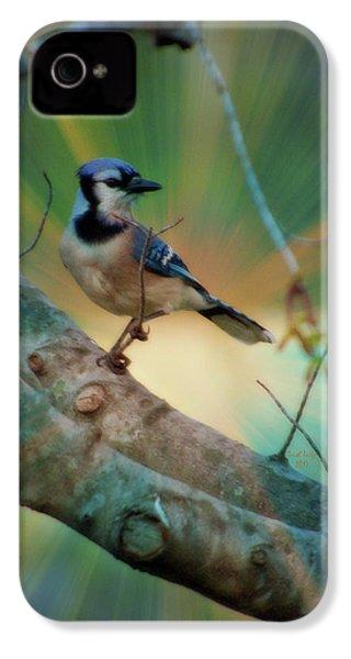 Baby Blue IPhone 4 Case by Trish Tritz