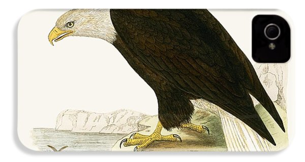 Bald Eagle IPhone 4 Case by English School