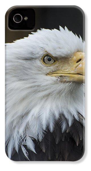 Bald Eagle Portrait IPhone 4 Case by Gary Lengyel