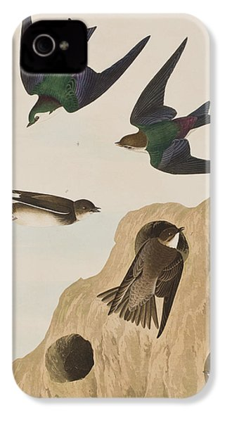 Bank Swallows IPhone 4 Case by John James Audubon