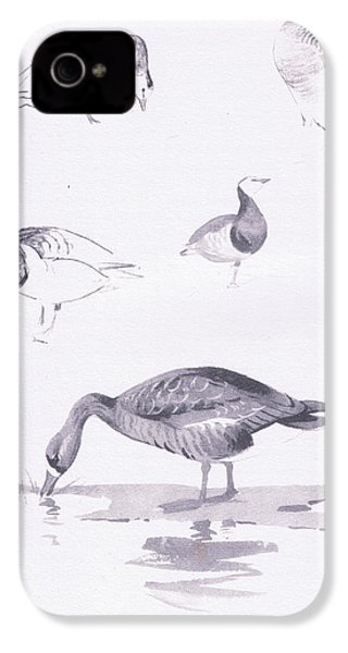 Barnacle And White Fronted Geese IPhone 4 / 4s Case by Archibald Thorburn