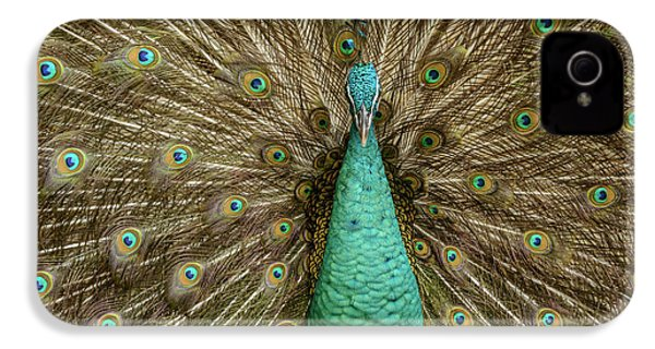IPhone 4 Case featuring the photograph Peacock by Werner Padarin