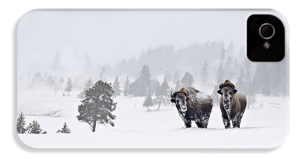 IPhone 4 Case featuring the photograph Bison In The Snow by Gary Lengyel