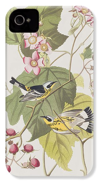 Black And Yellow Warblers IPhone 4 / 4s Case by John James Audubon