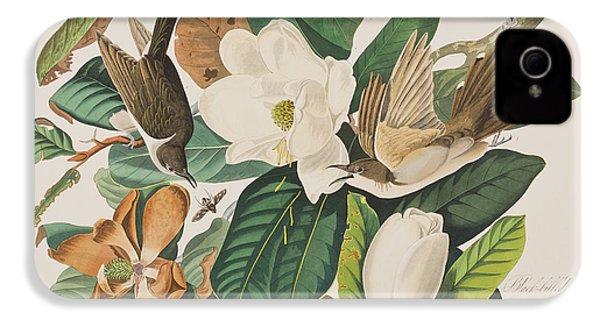 Black Billed Cuckoo IPhone 4 Case by John James Audubon