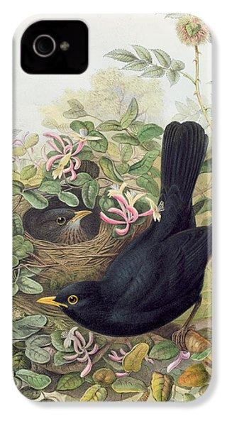 Blackbird,  IPhone 4 Case by John Gould