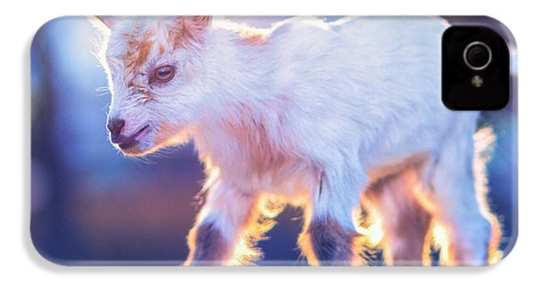 Little Baby Goat Sunset IPhone 4 Case by TC Morgan