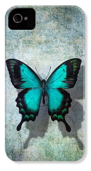 Blue Butterfly Resting IPhone 4 Case by Garry Gay