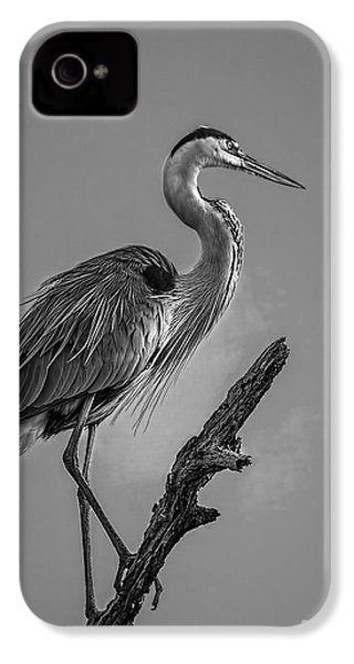 Blue In Black-bw IPhone 4 Case by Marvin Spates