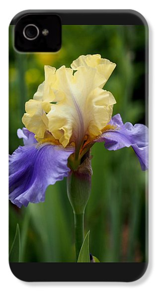 Blue Yellow Iris Germanica IPhone 4 / 4s Case by Rona Black