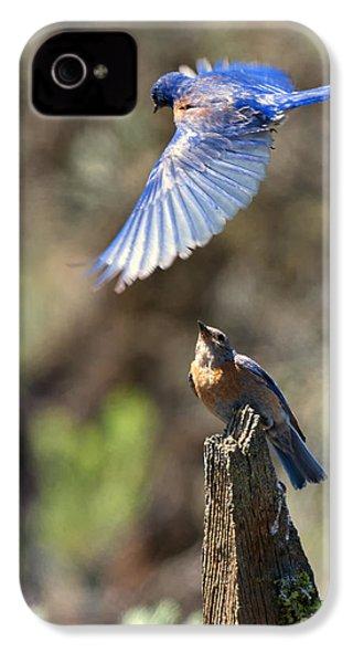 Bluebird Buzz IPhone 4 Case