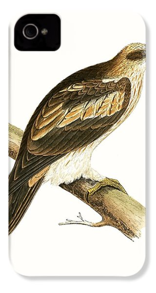 Booted Eagle IPhone 4 / 4s Case by English School