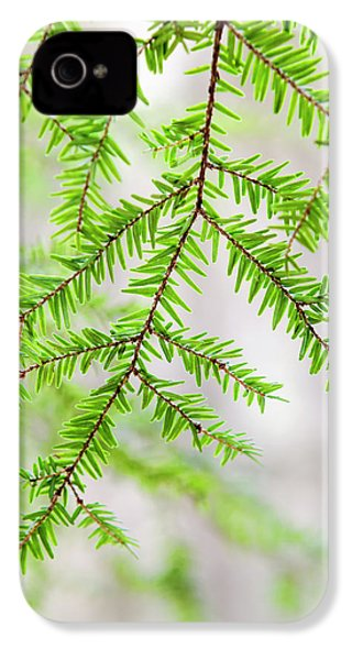 IPhone 4 Case featuring the photograph Botanical Abstract by Christina Rollo