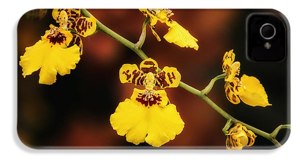 Bright And Beautiful Orchids IPhone 4 Case by Tom Mc Nemar