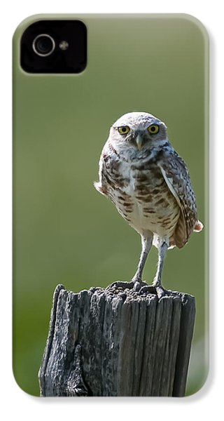 IPhone 4 Case featuring the photograph Burrowing Owl by Gary Lengyel
