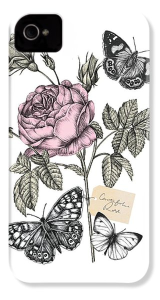 Cabbage Rose IPhone 4 / 4s Case by Stephanie Davies