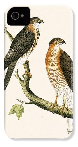 Calcutta Sparrow Hawk IPhone 4 Case by English School