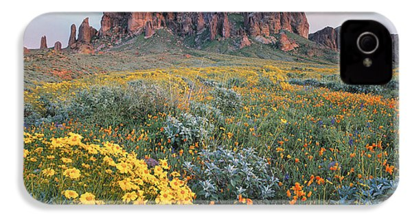California Brittlebush Lost Dutchman IPhone 4 Case