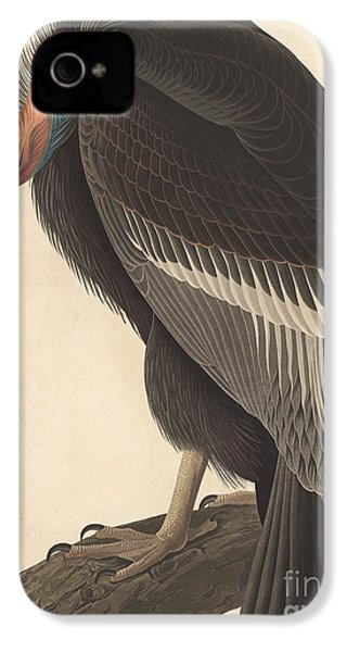 Californian Vulture IPhone 4 / 4s Case by John James Audubon