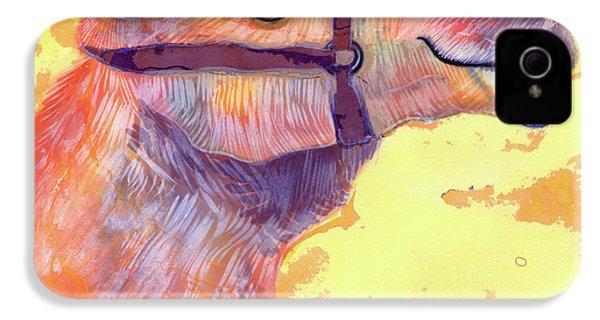 Camel IPhone 4 Case by Jane Tattersfield