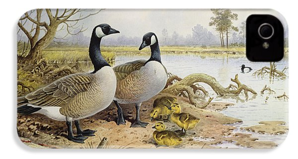 Canada Geese IPhone 4 Case by Carl Donner