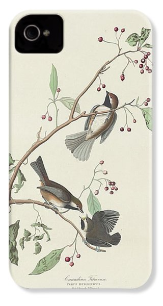 Canadian Titmouse IPhone 4 / 4s Case by Anton Oreshkin