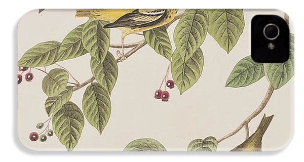 Carbonated Warbler IPhone 4 Case